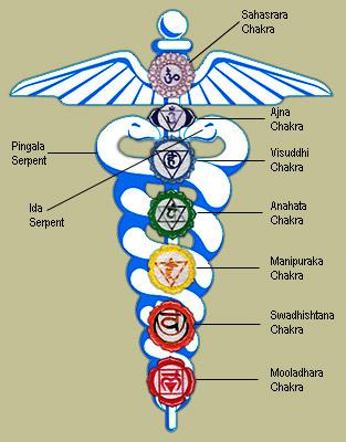 Kundalini - el poder de la serpiente