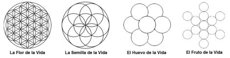Composición Gométrica Flor de la Vida