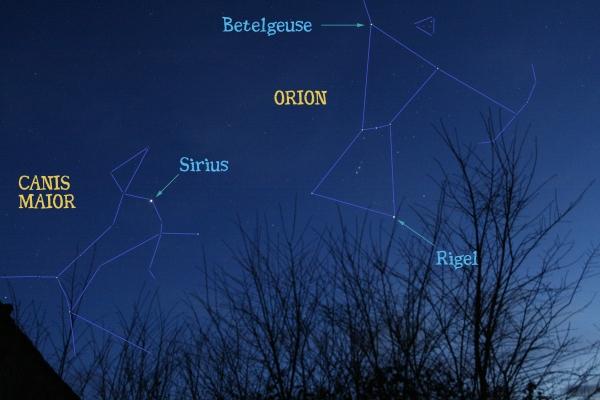 Canis Major - Sirius