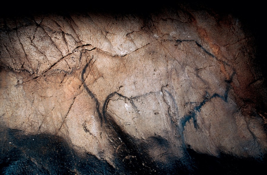 Uno de los bisontes de El Castillo