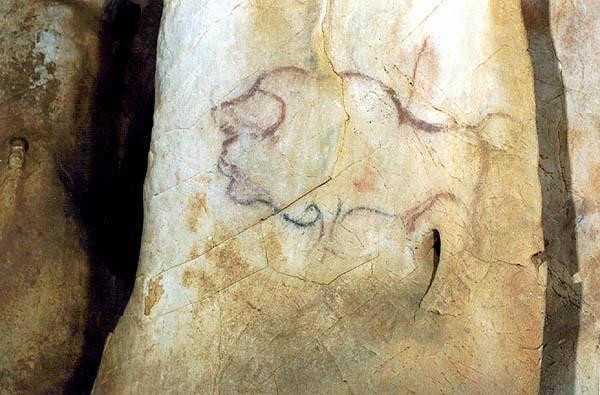 Bisonte en la cueva de la Pasiega