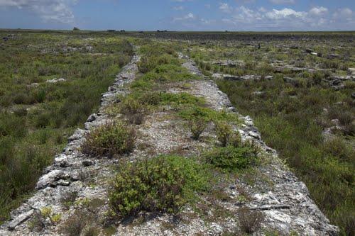 malden-ruines4